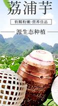 广西特产荔浦芋